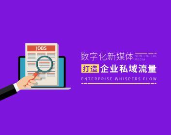 数字化新媒体,打造企业私域流量 互联网新媒体 营销运营 短视频营销